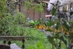 Można więc tu napotkać przestronne trawniki, zacienione, intymne alejki, place zabaw oraz ogródki warzywne. Te akurat są zamknięte, a korzystają z nich okoliczne szkoły w ramach zajęć praktycznych.
