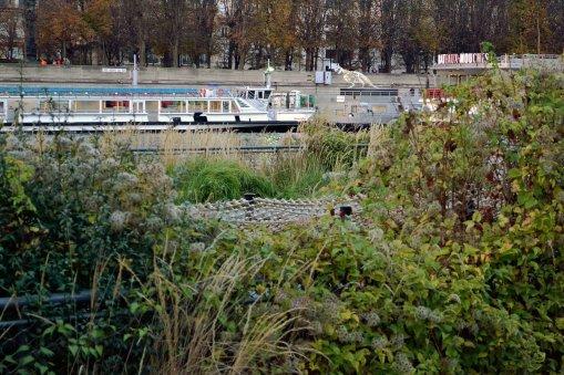 Pływające ogrody Niki-de-Saint-Phile. Wymurowane nabrzeże Sekwany znalazło swój sposób na przywrócenie natury. Nie wiem, czy to skutek wyjątkowo ciepłej jesieni, czy nagromadzenia ziół, ale nawet w listopadzie czuć intensywny zapach łąki.