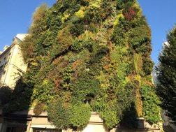 Paryż zielony. To jeden z kilku budynków, gdzie postanowiono założyć (dosłownie!) wiszące ogrody.