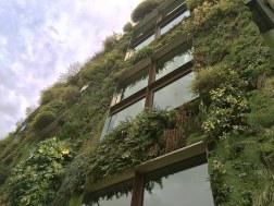 Zielone mury Musée du quai Branly