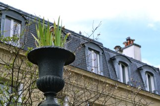 """Jedyną cechą łączącą budynki na zamkniętym Cité des Fleurs jest to, że wszystko jest """"neo-"""". Mimo tej różnorodności, to dość spokojna i przytulna uliczka, nad którą czuwa (jak głoszą tablice na obu jej krańcach) gospodarz domów."""