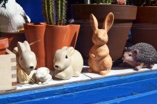 Królik, królik, królik, królik i jeż!
