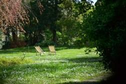 Tajemniczy ogród (błogosławione szpary w płocie!)