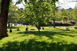 Park Renelagh - założony na fali mody na wszystko co angielskie w 1774 roku. Na organizowanych tu balach bywała Maria Antonina. Dziś po prostu sympatyczny park.