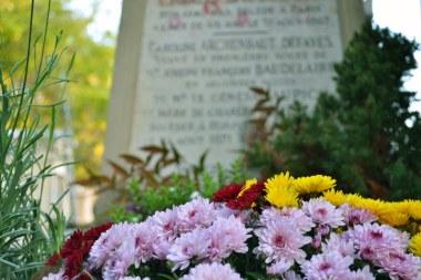 Baudelaire w kwiatach...